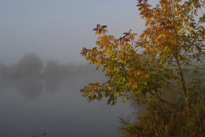 Jesienny swit nad Wisla - okolice wsi Kochów (gm. Maciejowice)