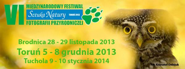 Pokaż Miejsca Festiwalowe Sztuka Natury Toruń 2013 na większej...