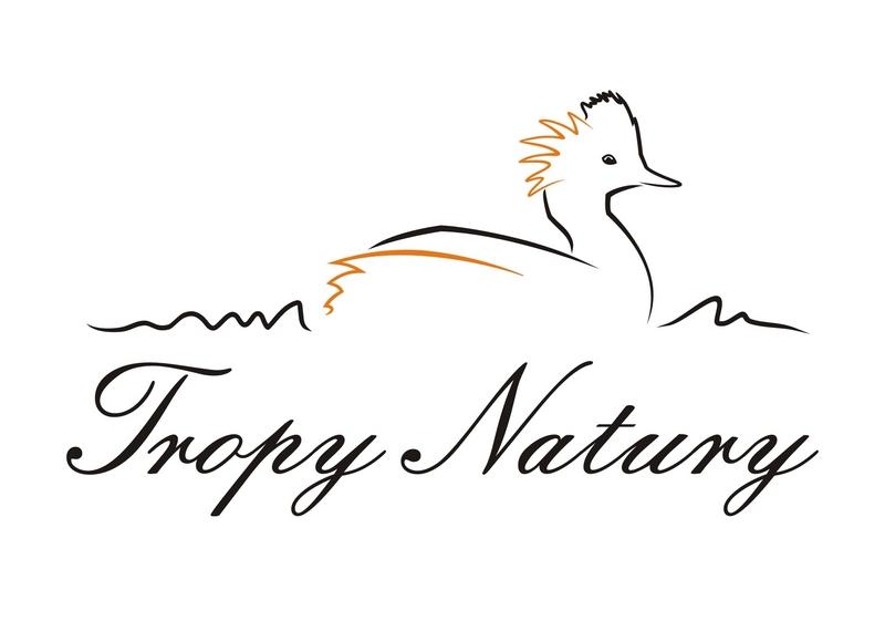 Tropy Natury Marek Cieszynski Logo _m