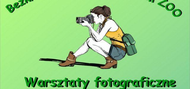 """Międzynarodowy Festiwal Fotografii i Filmu Przyrodniczego """"Sztuka Natury"""", Muzeum Przyrodnicze […]"""