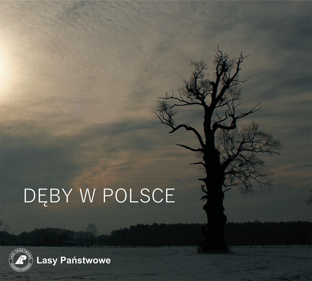 Dęby w polsce — krzywe_Q.cdr
