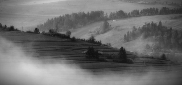 Urodziłem się 1962 roku w Bydgoszczy. Fotografuję krajobrazy i przyrodę […]