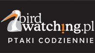 Wortal www.BirdWatching.PL ma już 10 lat i od dawna jest […]
