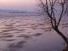 Zimowy wieczor nad Wisla - okolice wsi Kobylnica (gm. Maciejowice, pow. garwolinski, woj. mazowieckie)