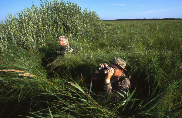 Bielorussian ornithologist in Dzikaje peat-bog observing from di